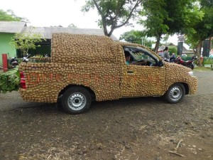 Mobil hias